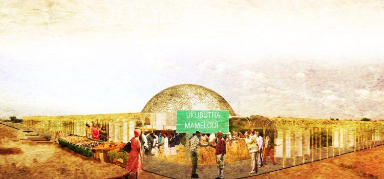 El sistema de conversión de desechos en energía de Nicole Moyo «movilizará a las comunidades en los asentamientos informales».