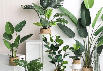 Deco and Lemon: Ventajas de decorar con plantas artificiales súper realistas
