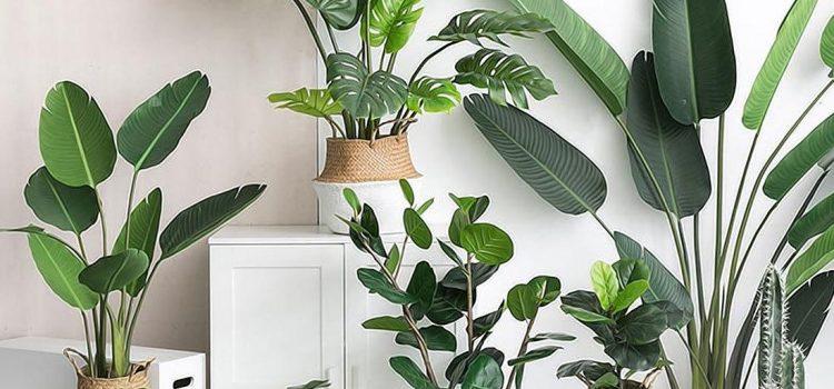 Deco and Lemon: Ventajas de decorar con plantas artificiales súper realistas