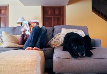 Confort y comodidad con los mejores calefactores eléctricos