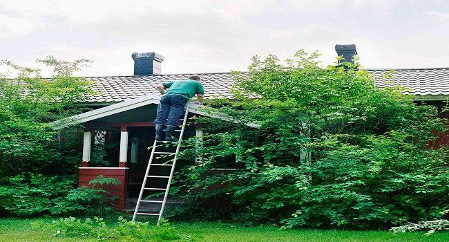 Mantenimiento de la casa en cada estación del año
