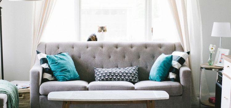 ¿Tu hogar o negocio necesitan una reforma?