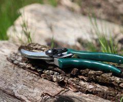 ¿Cómo afilar las tijeras para podar? Con piedra, esmeril, dremel o lija